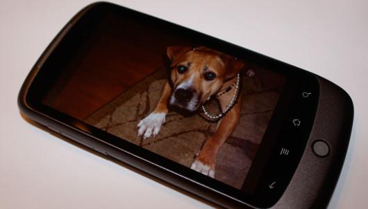 Google Nexus One一键获取ROOT权限图文教程